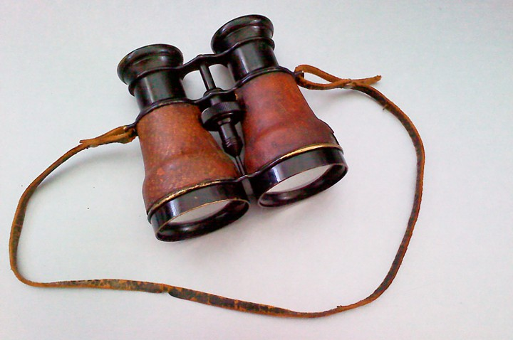 These lovely binoculars come from the antique store as well.